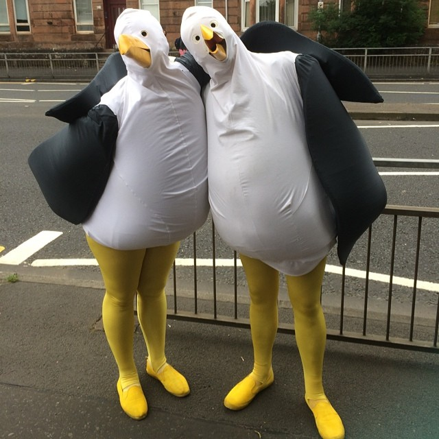 A guy just told us he's smoking a joint and asked if we could see penguins. I think their seagulls ;)