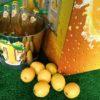 Tennent's Lemon T Lager