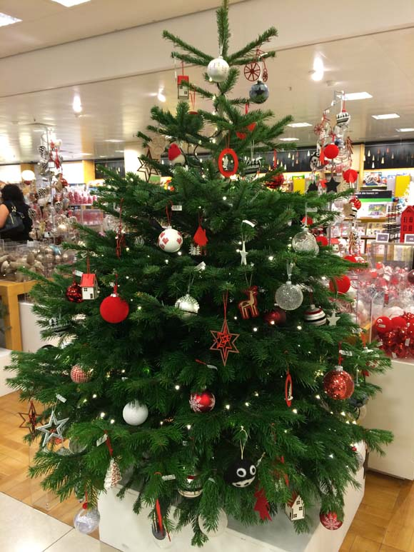 John Lewis at Christmas Nordmann Fir Real Christmas Tree with Stand