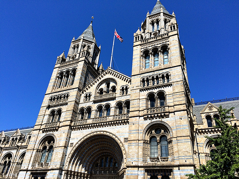 72 hours in London- Natural History Museum