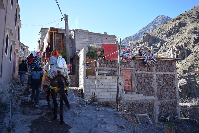 Atlas-Mountains-Marrakech-Mule Climb