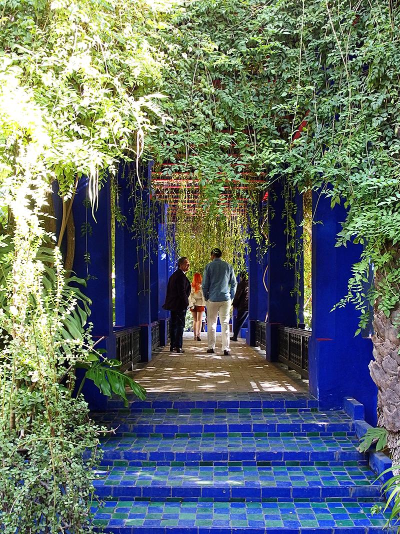 majorelle garden idillic canopy - Majorelle Garden