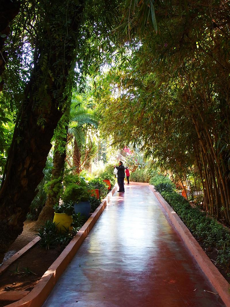 Majorelle Garden - Walkway