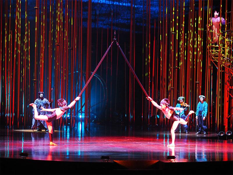 Cirque du Soleil Varekai- Aerial Swings