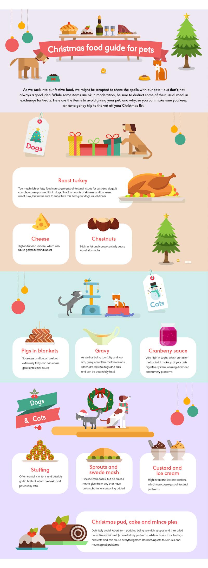 More Than- Feeding your pets this festive season- Ananyah